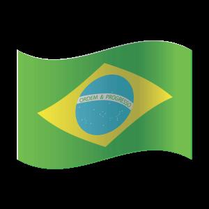 ColorcityLTD-Brasil-Flag