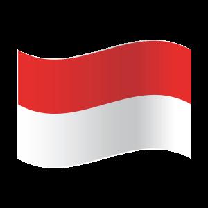 ColorcityLTD-Indonestia-FLag